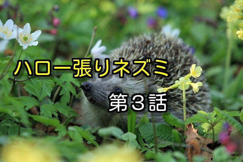 『ハロー張りネズミ』第3話再放送や動画を無料視 …